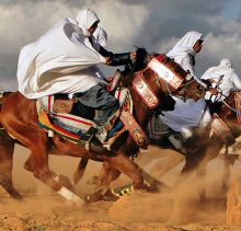 Take a look at this captivating photography series of life in the Libyan Desert. Photographer Bashar Shglila captures life in the Sahara. Photography Series, Equine Photography, Photography Ideas, Horse Dance, Horse Art, Desert Life, North Africa, Horse Racing, Beautiful Horses