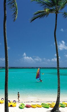 Punta Cana in the Dominican Republic is full of beauty and full of fun activities for your #honeymoon