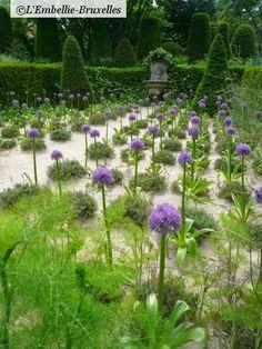 Les Jardins Agapanthe :