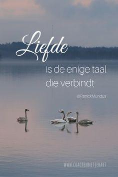 Liefde is de enige taal die verbindt...