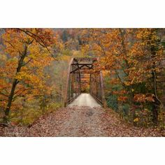 Bull Run Bridge .my favorite swimming hole! I've been going there since I was a kid. Burgess Falls, Autumn Scenes, Back Road, Swimming Holes, Fall Pictures, Walking In Nature, Fall Season, Forests, Pathways