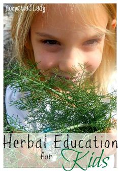 Herbal Education for Kids l Homestead Lady (.com)l Resources for teaching kids about herbs!