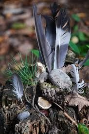 Image result for pagan plant altar