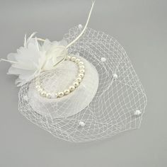 Birdcage Net Fascinator Bridal hat