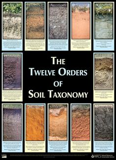 McKenzie Mulnix USDA NRCS (National Resource Conservation Service) Twelve Orders of Soil Taxonomy poster Plant Science, Earth Science, Science Nature, Science Fair, Life Science, Soil Classification, Outdoor Education, Organic Gardening Tips, Garden Soil