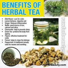 Cross your teas . I Raw for Beauty Natural Health Remedies, Herbal Remedies, Herbal Tea Benefits, Herbal Teas, Health Benefits, Herbal Plants, Raw For Beauty, Healthy Drinks, Healthy Eating