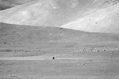 Image of distant LM