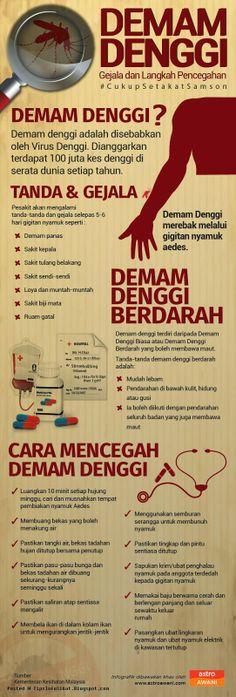 11 Best DENGUE images in 2013 | Dengue fever, Aplastic