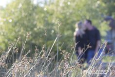 #engagement #engagementshoot #love #wedding #Winnipeg #meganbrittanyphotography