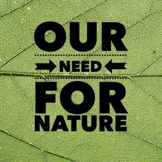 Our Need For Nature - How physical health needs to be balanced with mental health.