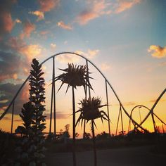 PortAventura Park en Vila-seca, Cataluña. - http://sixt.info/Barcelona-Pinterest #Ocio