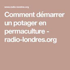 Comment démarrer un potager en permaculture - radio-londres.org