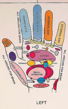 Home Massagers. How To Make Massage Even More Enjoyable. Could you improve your massage techniques at all? Are you aware of what goes into a good massage? Read on to learn all about massage therapy. Health Benefits, Health Tips, Health And Wellness, Health And Beauty, Health Fitness, Reflexology Points, Reflexology Massage, Massage Logo, Acupuncture Stress