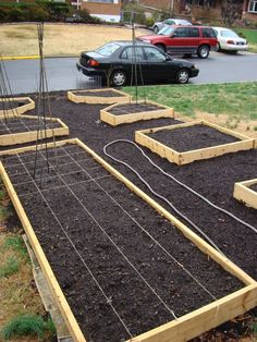 potager garden plans and pictures   Just built potager (pic) and question re plans - Potager Gardens Forum ...
