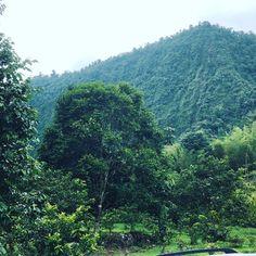 Mindo, Ecuador Mindo Ecuador, River, Outdoor, Outdoors, Outdoor Games, The Great Outdoors, Rivers