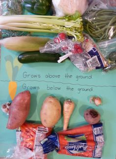 Paula's Preschool and Kindergarten: V is for vegetables - and various other things.