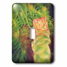 20 Light Switch Covers Ideas Light Switch Covers Electrical Outlet Covers Light Switch