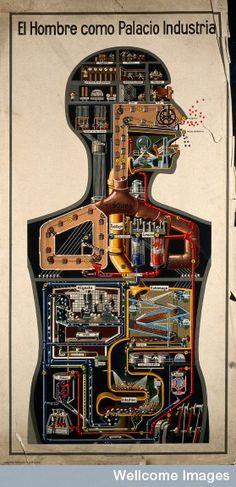 V0036136 El hombre como palacio industrial. Man as palace of industry. © Wellcome Library, London.
