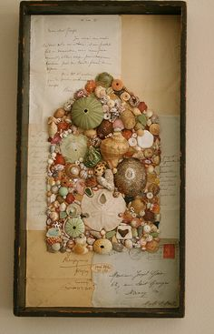 Shells gathered by Pam Garrison