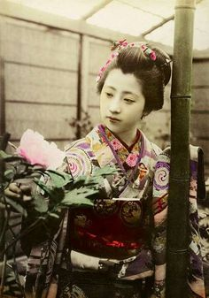 866764555 read The Burns Archive & powerHouse Books'Geisha, A Photographic History to  learn mo