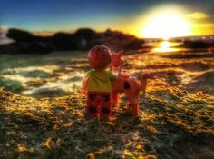 """""""Shaggy & Scooby"""" Shaggy And Scooby, Lego Photography, Various Artists"""