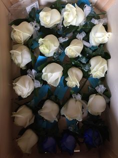 White rose and blue rose buttonholes with ruscus and ivy foliage.