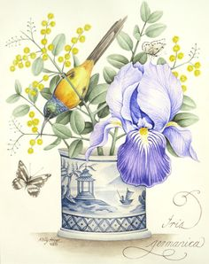 Bearded Iris with Orangebreasted Sunbird in a Blue and White Pot. Original Painting by Kelly Higgs