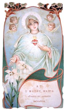 Even the seraphim themselves might descend from their lofty throne in heaven to take a lesson in love from the heart of Mary. St. Alphonsus Liguori