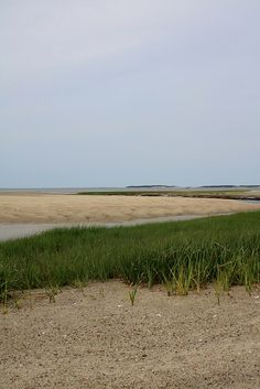Wellfleet Bay, Cape Cod
