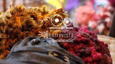 """Segundo vídeo da série """"adoro! FARM entrevista"""" com a artista plástica Aline Tercete (Alinet), produzido para o blog adoro! da marca…"""