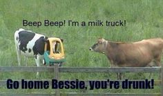 Haha country humor :)