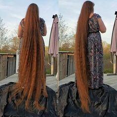 Rapunzel Hair, Super Long Hair, Beautiful Long Hair, Layered Cuts, Dream Hair, Female Images, Braids, Dreadlocks, Long Hair Styles