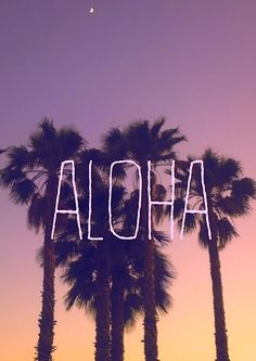 my dream is to move to hawaii, learn how to surf, fall in love, have and raise kids in hawaii, and have the best summer of my life Cocoa Beach, Summer Pictures, Pretty Pictures, Summer Of Love, Summer Time, Hello Summer, Summer Fun, Hawaiian Quotes, Aloha Quotes