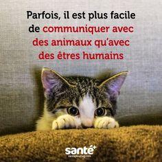 cool Citation - #citations #vie #amour #couple #amitié #bonheur #paix #esprit #santé #jeprends...
