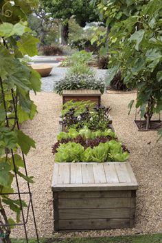 ARTECHO Architecture and Landscape Architecture. Succulent container garden.