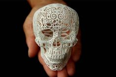Skull Sculpture Crania Anatomica Filigre small by shhark on Etsy. Another beautiful skull. 3d Laser Printer, 3d Printed Objects, 3d Modelle, Sculpture Projects, Vanitas, Skull And Bones, Day Of The Dead, Oeuvre D'art, Creations