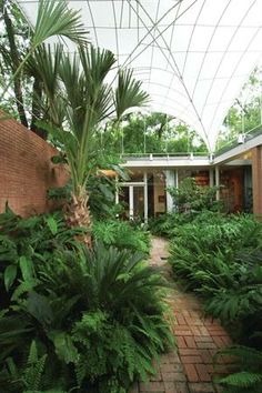 The interior courtyard of the de Menil house, designed by Philip Johnson.