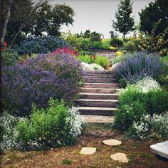 I want to do this near my backyard steps so pretty !