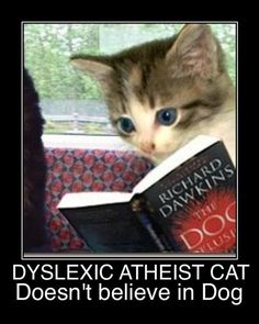 Dyslexic Atheist Cat
