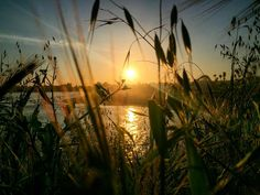 Santa Cruz CA: #sunset #coast #Boardwalk #athens  #crete #gdansk #malaga  #tunis #kiev #vilnius #norwich #praha  #jerusalem #tehran #tokyo #marseilles  #lima #bestofsantacruz #panama #buenosaires #islamargarita  #toronto #santacruztoday #santacruzlife #santacruz  #capitola #sanjose  #santacruznow #visitsantacruz by slawekwojtowicz