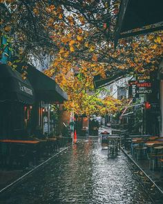 Autumn rain // rainy days (somewhere in Turkey) Rainy Mood, Rainy Night, Rainy Days, Rain Photography, Street Photography, Rainy Day Photography, I Love Rain, Autumn Rain, Autumn Aesthetic