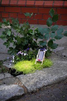 Steve Wheen creates tiny gardenscapes in potholes and cracks.