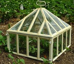 Think of garden cloches as tiny portable greenhouses, designed to protect plants from the effects of wind, cold, and insects. As practical as they are attr Cheap Greenhouse, Portable Greenhouse, Backyard Greenhouse, Greenhouse Plans, Victorian Greenhouses, Victorian Gardens, Small Gardens, Outdoor Gardens, Indoor Gardening