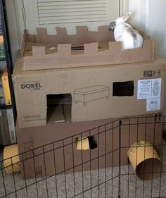 New cardboard castle for Radar bunny!