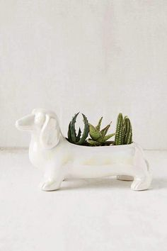 Urban Outfitters Dachshund Planter  #ad
