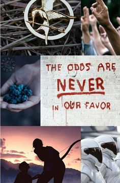 Hunger Games Pictures  - Hunger Games Edits