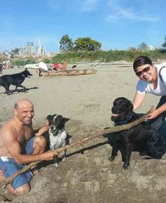 Black Lab Out swims Man to Save Dog Being Swept Out to Sea