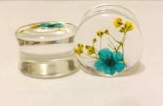 3/4 inch clear acrylic plugs embellished with yellow babies breath and teal died bridal wreath. These plugs have a resin dome.