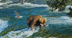 bear hunting in river 4k ultra hd wallpaper