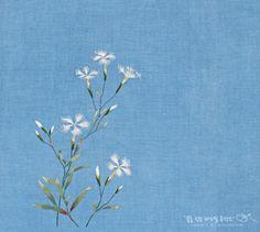 술패랭이dianthus superbus var. longicalycinus 쪽염색 광목 / 면사 패랭이 꽃